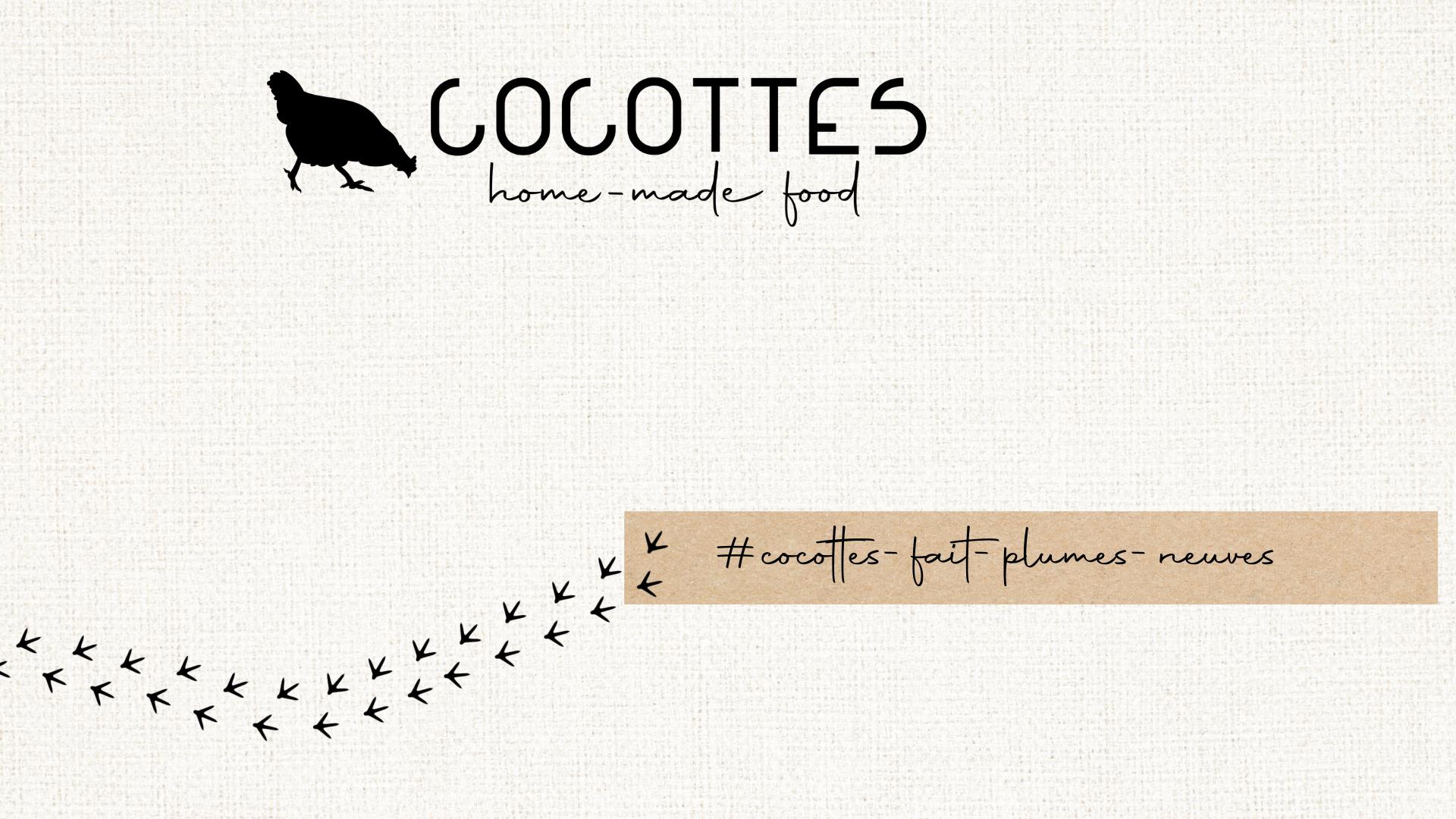 Cocottes fait plumes neuves